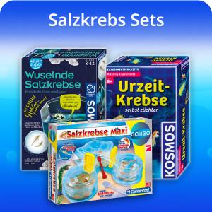salt fairy shrimp set