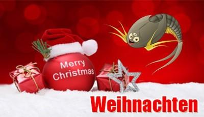 Urzeitkrebse und Triops als Weihnachtsgeschenk - Urzeitkrebse und Triops als Weihnachtsgeschenk