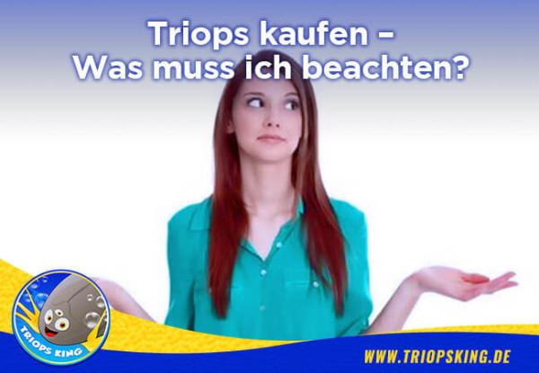 Triops kaufen - Was muss ich beachten? -