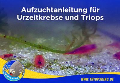Aufzuchtanleitung für Urzeitkrebse und Triops - Zuchtanleitung für Triops und Urzeitkrebse | Triopsking.de