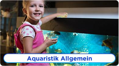 Aquaristik Ratgeber