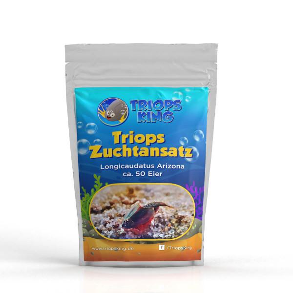 Triops Longicaudatus Arizona Zuchtansatz