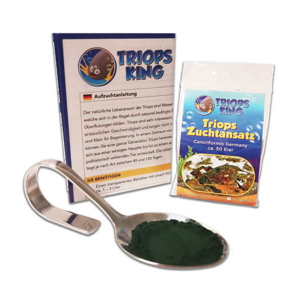 Triops Cancriformis Germany Starter Set